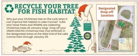 Recycle Your Christmas Tree - Help The Fish